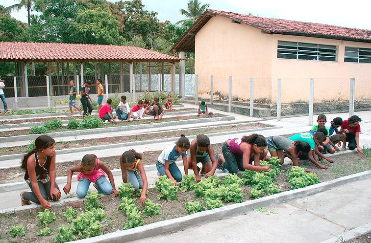 escola_rural